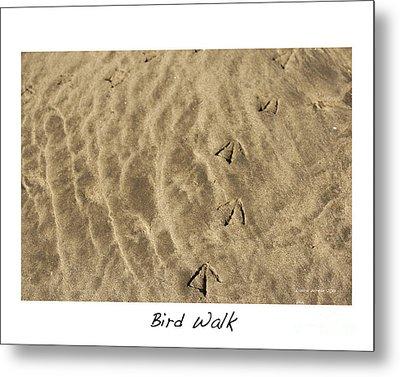 Bird Walk Metal Print by Artist and Photographer Laura Wrede