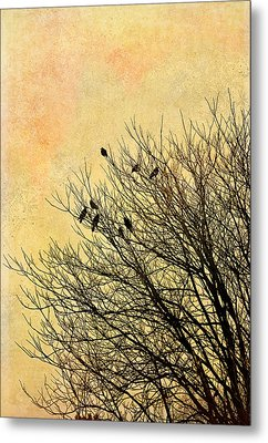 Birds Metal Print by Gynt
