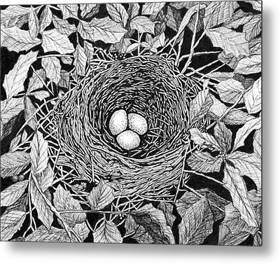 Bird's Nest Metal Print by Janet King