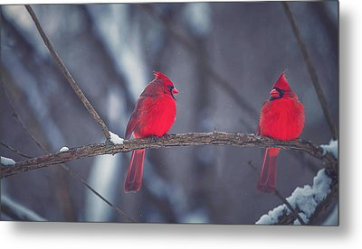 Birds Of A Feather Metal Print by Carrie Ann Grippo-Pike