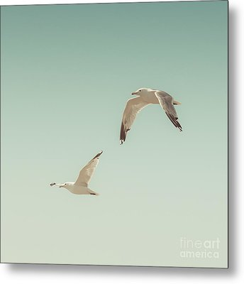 Birds Of A Feather Metal Print by Lucid Mood