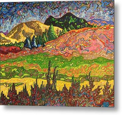 Birdseye Landscape #2 Metal Print by Dale Beckman