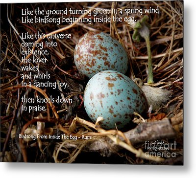 Birdsong From Inside The Egg Metal Print by Lainie Wrightson