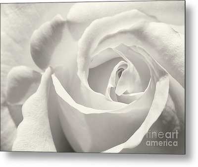 Black And White Curves Metal Print by Sabrina L Ryan