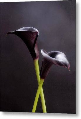 Black And White Purple Flowers Art Work Photography Metal Print by Artecco Fine Art Photography