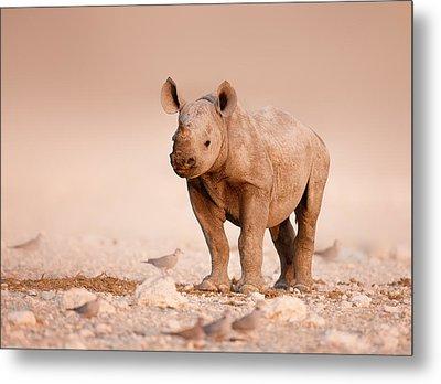 Black Rhinoceros Baby Metal Print by Johan Swanepoel