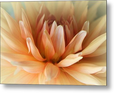 Blessed  Metal Print by  The Art Of Marilyn Ridoutt-Greene