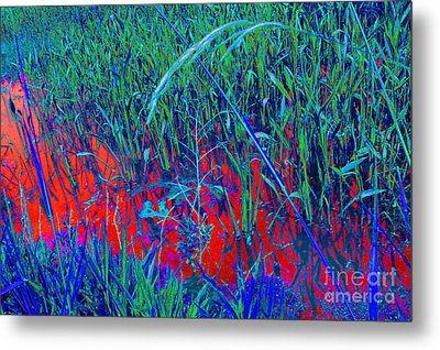 Bloody Battle Of New Orleans 1 Metal Print by Alys Caviness-Gober