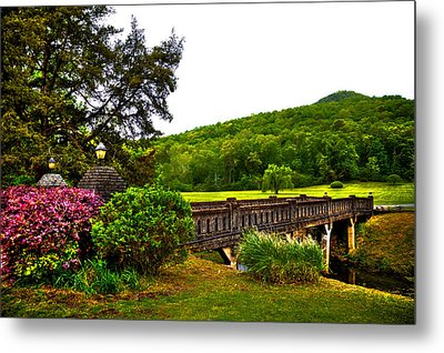 Blowing Spring Park Metal Print by David Patterson