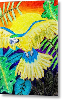 Blue And Gold Macaw Metal Print by Pati Photography