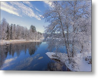 Blue And White Metal Print by Rose-Maries Pictures