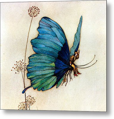 Blue Butterfly II Metal Print by Warwick Goble