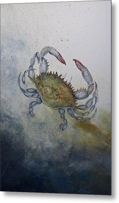 Blue Crab Print Metal Print by Nancy Gorr