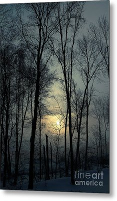 Blue Daybreak Metal Print by Karol Livote