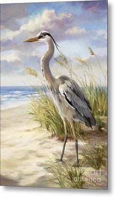 Blue Heron  Metal Print by Laurie Hein