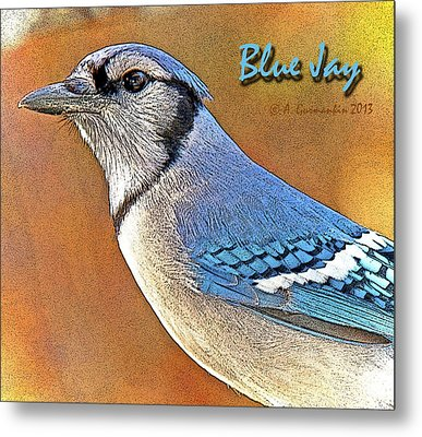 Metal Print featuring the photograph Blue Jay by A Gurmankin