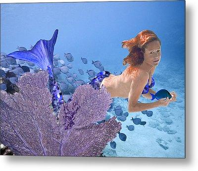 Blue Mermaid Metal Print by Paula Porterfield-Izzo