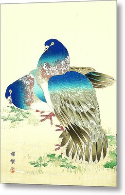Blue Pigeons Metal Print by Pg Reproductions
