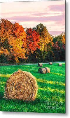 Blue Ridge - Fall Colors Autumn Colorful Trees And Hay Bales II Metal Print by Dan Carmichael