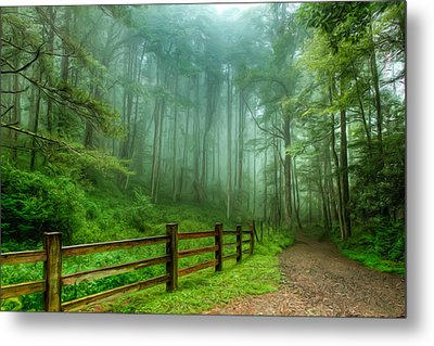 Blue Ridge Parkway - Foggy Country Road And Trees II Metal Print by Dan Carmichael