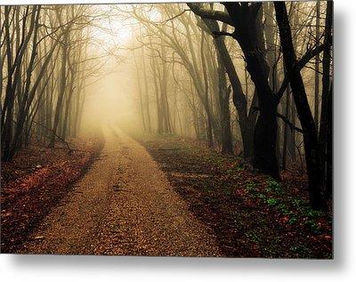 Blue Ridge Parkway In The Fog Metal Print by Maria Jaeger