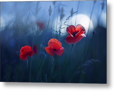 Blue Summer Metal Print by Magda  Bognar