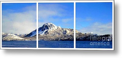 Blue Winter Triptych Metal Print by Barbara Griffin