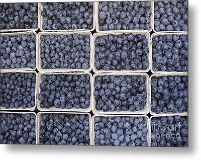 Blueberries Metal Print by Tim Gainey