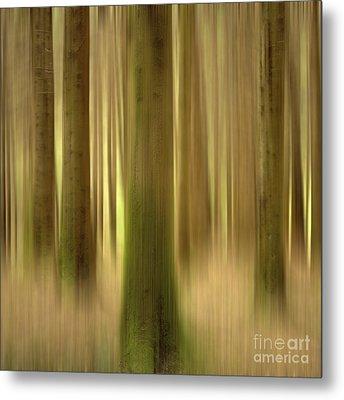 Blurred Trunks In A Forest Metal Print by Bernard Jaubert