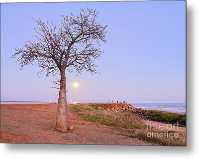Boab Tree And Moonrise At Broome Western Australia Metal Print by Colin and Linda McKie