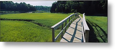 Boardwalk In A Field, Nauset Marsh Metal Print by Panoramic Images