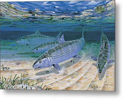 Bonefish Flats In002 Metal Print by Carey Chen