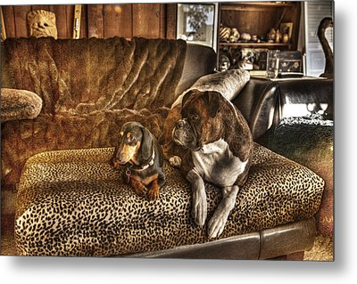 Bookends Metal Print by William Fields