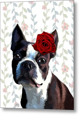 Boston Terrier With A Rose On Head Metal Print by Kelly McLaughlan