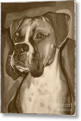 Boxer Dog Sepia Print Metal Print by Robyn Saunders