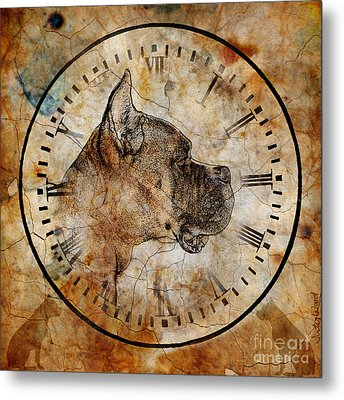 Boxer Time Metal Print by Judy Wood