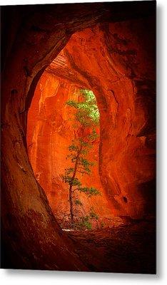 Boynton Canyon 04-343 Metal Print by Scott McAllister