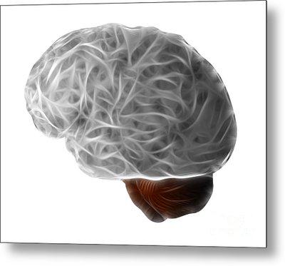 Brain Metal Print by Michal Boubin