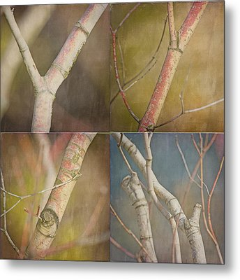 Branches Times Four Metal Print by Bonnie Bruno