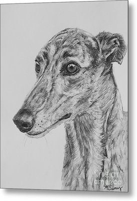 Brindle Greyhound Face In Profile Metal Print by Kate Sumners