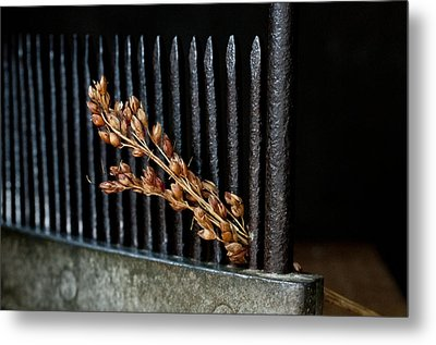Broomcorn And Broomcomb Metal Print by Wilma  Birdwell