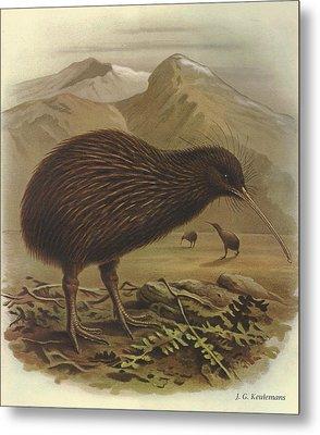 Brown Kiwi Metal Print by J G Keulemans