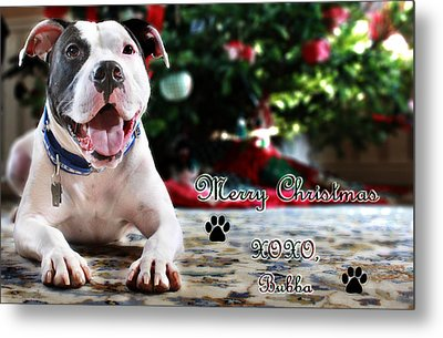 Bubba's First Christmas Metal Print by Shelley Neff