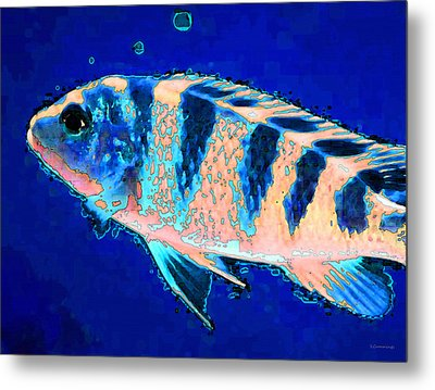 Bubbles - Fish Art By Sharon Cummings Metal Print by Sharon Cummings