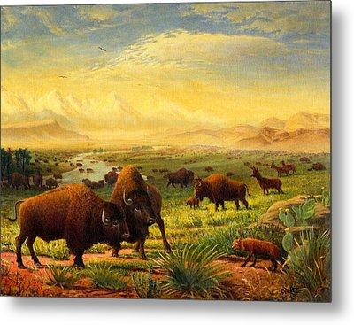Buffalo Fox Great Plains Western Landscape Oil Painting - Bison - Americana - Historic - Walt Curlee Metal Print by Walt Curlee