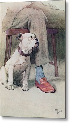 Bulldog Pen & Ink & Wash On Paper Metal Print by Cecil Charles Windsor Aldin