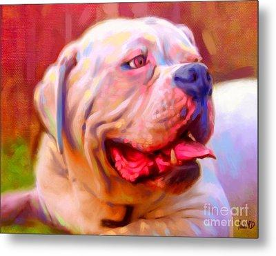 Bulldog Portrait Metal Print by Iain McDonald