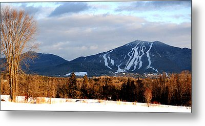 Burke At Dusk Metal Print by Tammy Collins