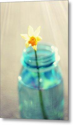 Buttercup Photography - Flower In A Mason Jar - Daffodil Photography - Aqua Blue Yellow Wall Art  Metal Print by Amy Tyler