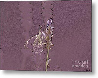 Butterfly 3 Metal Print by Carol Lynch